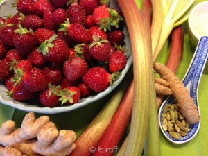 Erdbeer-Rhabarber-Aufstrich frisch-2877