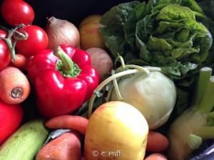 frisches Gemüse-2902
