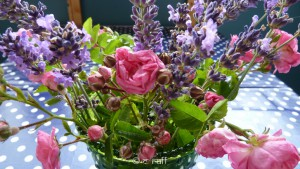 Lavendel-1090461