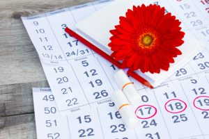 Menstruation calendar with notebook, cotton tampons, red flower on table. Woman critical days, woman hygiene protection